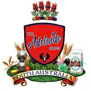 the-adelaide-visa-council-visa