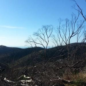63-beetaloo-view