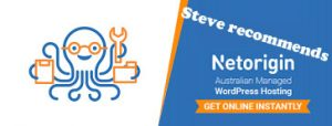 Steve recommends NetOrigin web hosting